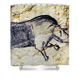 Chauvet Rhinoceros Shower Curtain