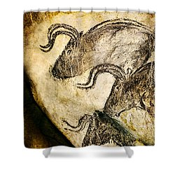 Chauvet - Three Aurochs Shower Curtain