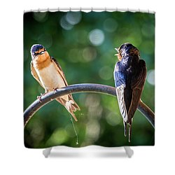 Chirping Shower Curtain
