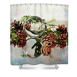 Shower Curtain featuring the photograph Christmas Thoughts by Randi Grace Nilsberg