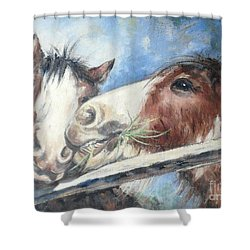 Clydesdale Pair Shower Curtain