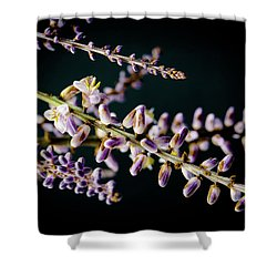 Cocoons Shower Curtain
