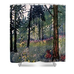 Codbeck Forest Shower Curtain