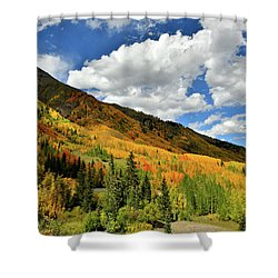 Color In The Spotlight At Red Mountain Pass Shower Curtain