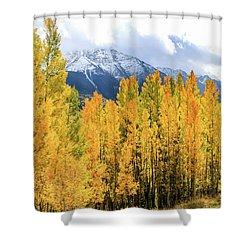 Colorado Aspens And Mountains 1 Shower Curtain