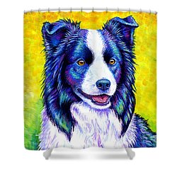 Colorful Border Collie Dog Shower Curtain