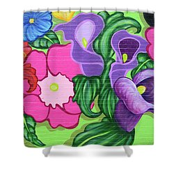 Colorful Mural Shower Curtain