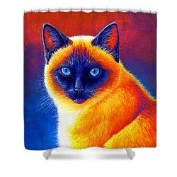 Colorful Siamese Cat Shower Curtain