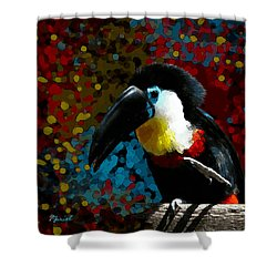 Colorful Toucan Shower Curtain
