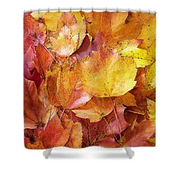 Colors Of Fall - Red To Yellow Shower Curtain