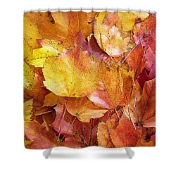 Colors Of Fall - Yellow To Red Shower Curtain