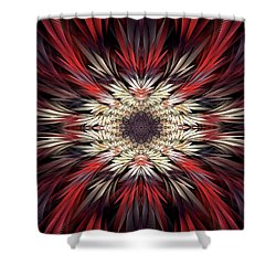 Colossians Shower Curtain