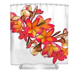 Coloured Frangipani White Bkgd2 Shower Curtain