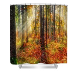 Shower Curtain featuring the photograph Colours Of Nature 02 by Edmund Nagele