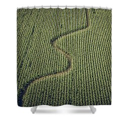 Corn Field Shower Curtain