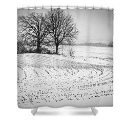 Shower Curtain featuring the photograph Corn Snow by Kendall McKernon