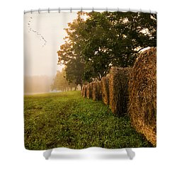 Shower Curtain featuring the photograph Country Morning Mist by Mark Guinn