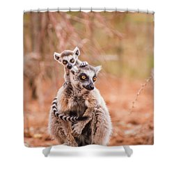 Shower Curtain featuring the photograph Curiosity by Alex Lapidus