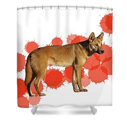 D Is For Dingo Shower Curtain