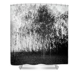 D1984p Shower Curtain