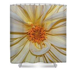 Dahlia Summertime Beauty Shower Curtain