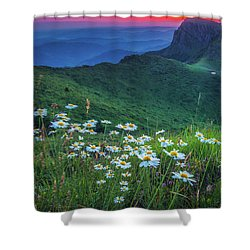 Daisies In The Mountain Shower Curtain