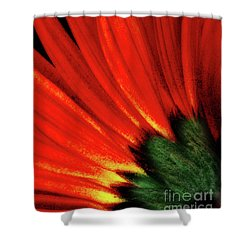 Daisy Aflame Shower Curtain