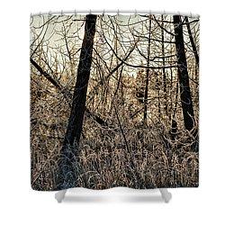 Deep Frost Shower Curtain