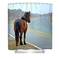 Shower Curtain featuring the photograph Delegate's Pride Awaiting Tourists On Assateague Island by Bill Swartwout Fine Art Photography
