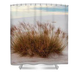 Shower Curtain featuring the photograph Desert Dwelling by Rick Furmanek