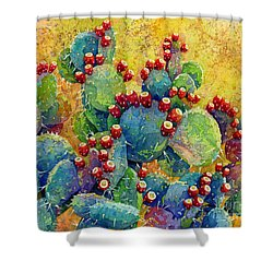 Desert Gems Shower Curtain