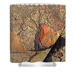 Shower Curtain featuring the photograph Details Along The Path 2 by Lynda Lehmann