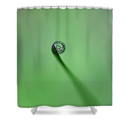 Shower Curtain featuring the photograph Dew Drop On Grass by John Rodrigues