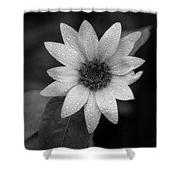 Dewdrops On A Sunflower Shower Curtain