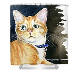 Diego Ginger Tabby Cat Painting Shower Curtain