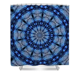 Shower Curtain featuring the photograph Blue Jay Mandala by Debbie Stahre