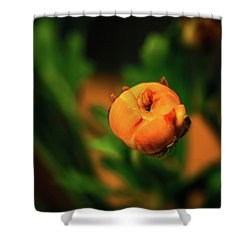 Dimensionality In Sphere Shower Curtain