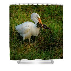 Dinner Is Served Shower Curtain