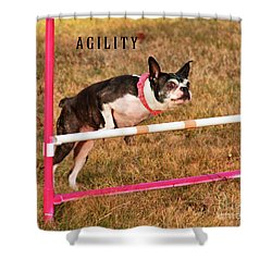 Shower Curtain featuring the photograph Doggie Agility  by Debbie Stahre