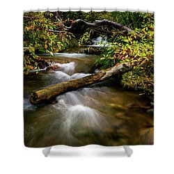 Shower Curtain featuring the photograph Dogwoods Along The Provo Deer Creek by TL Mair