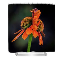 Shower Curtain featuring the photograph Double Your Pleasure by Dale Kincaid