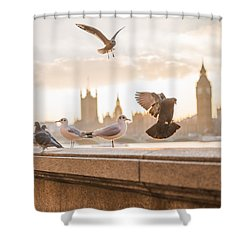 Doves And Seagulls Over The Thames In London Shower Curtain