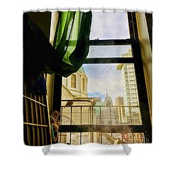 Shower Curtain featuring the photograph Doves In My Window by Joan Reese