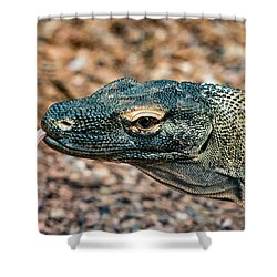 Dragon With No Fire Shower Curtain