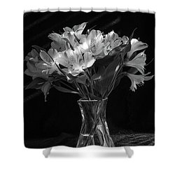 Dramatic Flowers-bw Shower Curtain