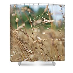 Shower Curtain featuring the photograph Dried Grass Out Of Focus by Scott Lyons