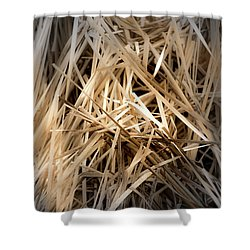 Dried Wild Grass I Shower Curtain