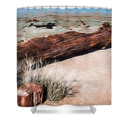 Shower Curtain featuring the photograph D R T In Arizona by Jon Burch Photography