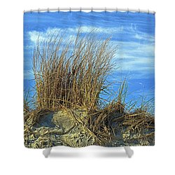 Shower Curtain featuring the photograph Dune Grass In The Sky by Bill Swartwout Fine Art Photography