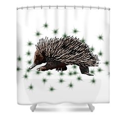 E Is For Echidna Shower Curtain